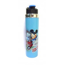 Disney Racer Water Bottle - 1000 ml