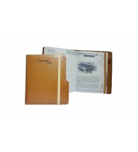 Light Brown Leather Corporate Folder-2017 (N4)