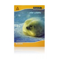 Classmate-notebook english (180 pages) - pack of 5