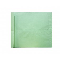 Envelope-net yellow & green 10 X 12 (pack of 20)